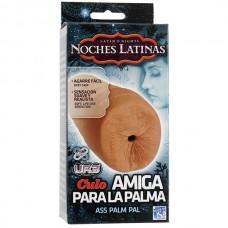 Мастурбатор анус Noches Latinas - Culo